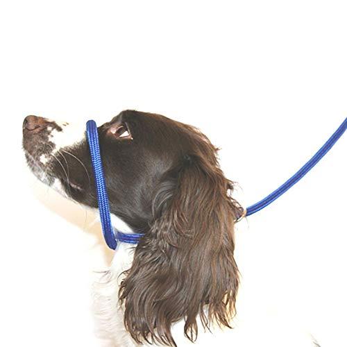 Dog & Field 8 Anti -Pull- Blei/Halter/Kopf Kragen (blau) - Einheitsgröße - Super Soft geflochtenes Nylon - Montageanleitung inklusive