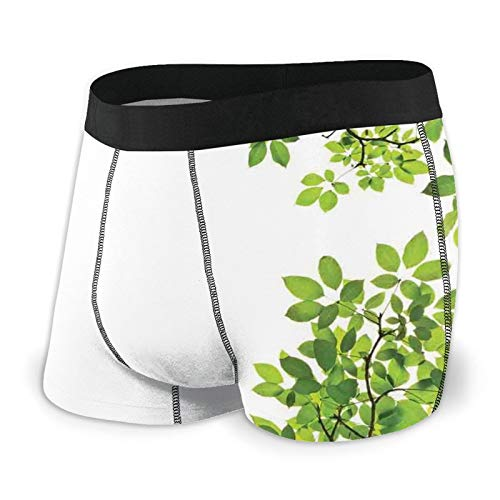 TENJONE Men's Boxer Briefs Underwear,Broad Leaves Close-Up Background Garden Organic Foliage Shrubs Cells Plant Image L