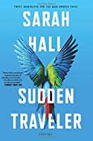 Sudden Traveler: Stories