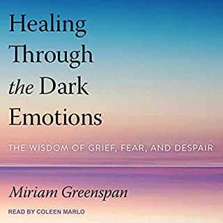 Healing Through the Dark Emotions     The Wisdom of Grief, Fear, and Despair              By:                                                                                                                                 Miriam Greenspan                               Narrated by:                                                                                                                                 Coleen Marlo                      Length: 12 hrs and 56 mins     Not rated yet     Overall 0.0