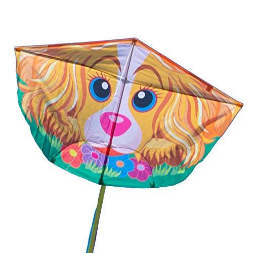 einleiner-Dragon – Fun Flyer Dog – pour enfants à partir de 6 ans – Dimensions : 120 x 78 cm – + cordon de 100 m Dragon