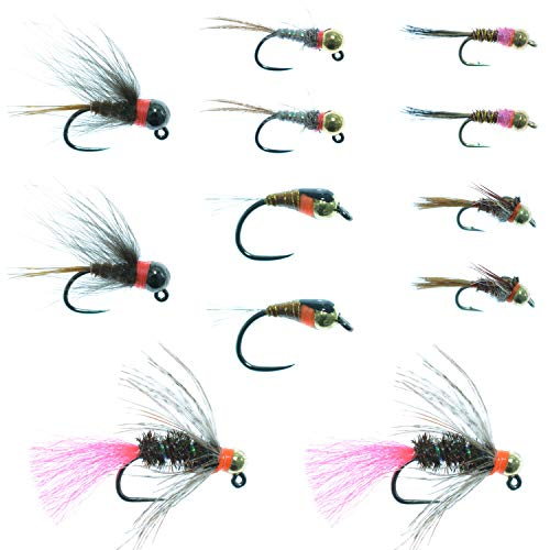 The Fly Fishing Place Czech Nymph Fly Fishing Flies Collection - One Dozen Tungsten Bead Euro Nymphing Fly Assortment - 2 Each of 6 Patterns - Hook Sizes 12, 14 and 16