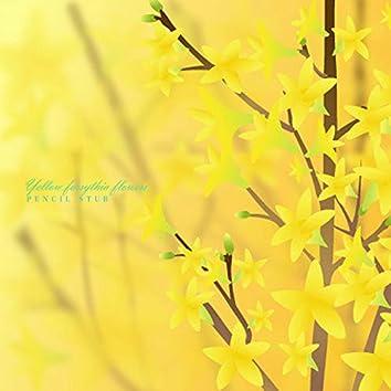 노란 개나리꽃
