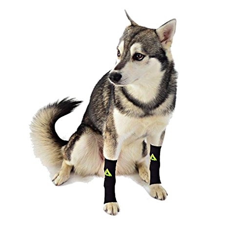 (PAIR) 2 x DOG Canine Pet Compression Wear Sleeve Foreleg Hind Leg By MyProSupports (Black, X-Large)
