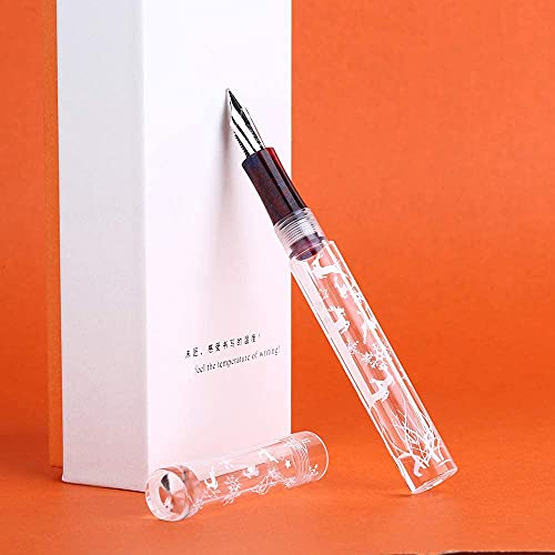 Majohn - Pluma estilográfica C1, punta media, resina acrílica con patrón de copo de nieve, relleno de cuentagotas de ojos, gran capacidad de tinta con convertidor y caja
