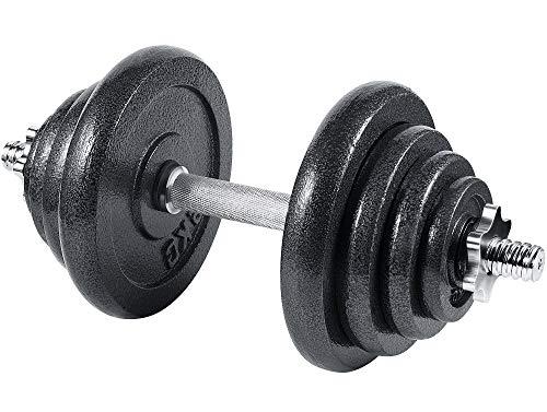 arteesol manubri, Regolabili manubri Palestra manubri Palestra regolabili 10 kg 15 kg 20 kg 30 kg Allenamento di Forza Pesistica per Casa (1 x 20 kg)