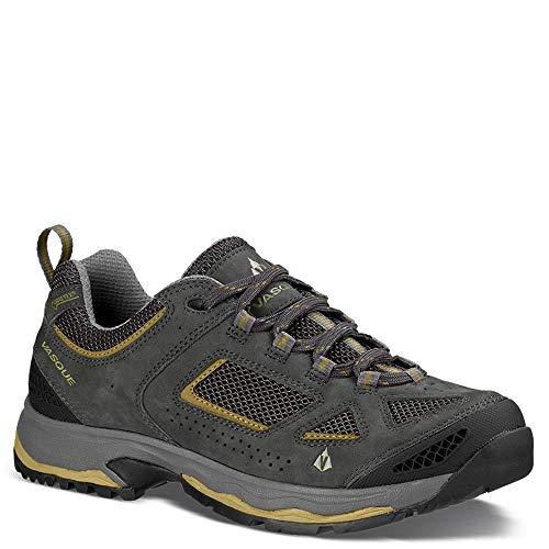 Vasque Men's Breeze III Low GTX Waterproof Hiking Boot, Magnet / Lizard, 12