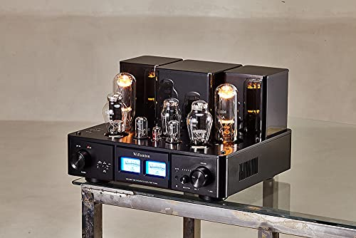 Willsenton R-800i 300B 805 Tube Single-Ended Class A Integrated Amp & Power Amplifier with Balanced XLR Input
