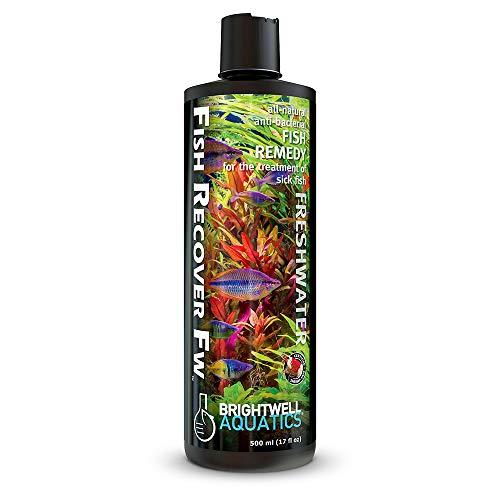 Brightwell Aquatics Fish Recover FW Natural Herbal Medication for Open Sores, 500ml