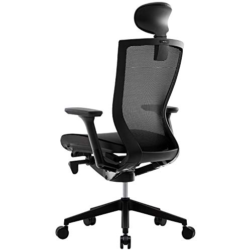 SIDIZ T50 Ergonomic Office Chair