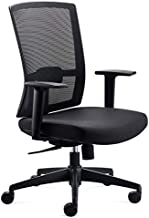 CHAIRLIN Ergonomic Mesh Mid-Back Home Office Computer Task Chair with Lumbar Support and Height Adjustable Armrest Supports up to 350 LB of Weight