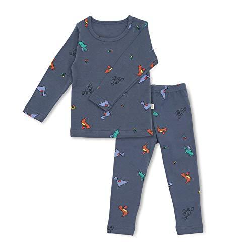 AVAUMA Baby Boys Girls Pajama Set 6M-8T Kids Cute Toddler Snug fit Pjs Cotton Sleepwear (Block_Blue S)