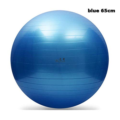 ZWwei Yoga Sport Ballon Bola Pilates Fitness Ball Esercizio Fitball Balance Gym PVC Pelota Workout Yoga Massage Sfera (Color : Blue65cm)