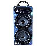 Music Life Altavoz Karaoke Bluetooth Portátil con Micrófono Inlámbrico USB Tarjeta TF Recargable con Radio FM (262-1)