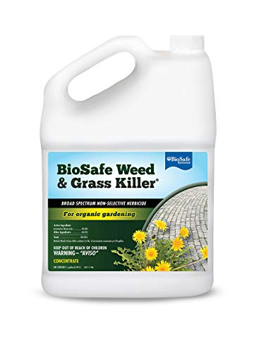 BioSafe Systems 7601-1 BioSafe Weed Control Concentrate, 1-Gallon