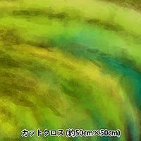 生地 『RIEKA グラデーションパレット 約50×50cm 1142-012』