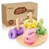 Peradix Puzzle en Bois Montessori Jeu de Puzzle Forme géométrique pour Enfant