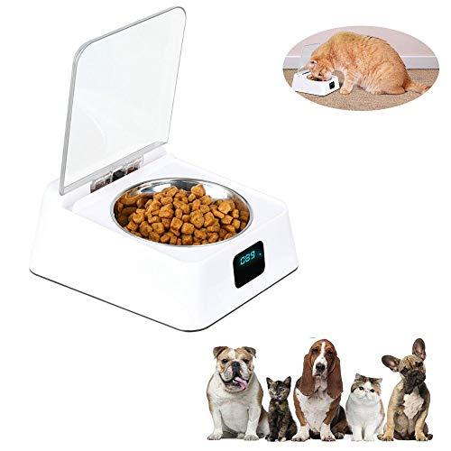 Lesgos Intelligenter automatischer Futterautomat, Concise Pet Futterautomaten mit Infrarot-Induktion, geeignet für Nass- und Trockenfutter
