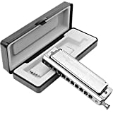 Chromatic Harmonica Key of C 10 Hole 40 Tone with Case for Professional Player Adult Beginner Students, Excellent Gift for Music Fan (Swan)- Silver Best Music Gift