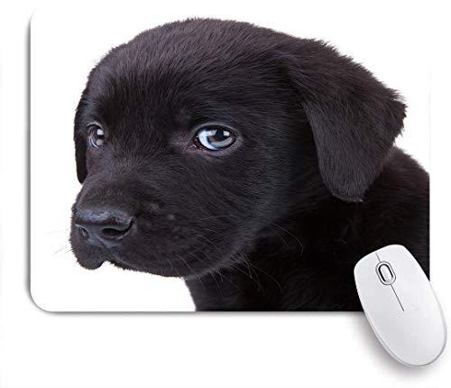 FOURFOOL Mauspad,niedlicher kleiner schwarzer Labrador Retriever Welpe, der die Kamera betrachtet,Laptop Tischunterlage wasserdichte Schreibunterlage für Büro Gaming rutschfest Mauspads 240mm x 200mm