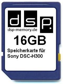 Suchergebnis Auf Für Dsp Memory 16 Gb Computer Zubehör