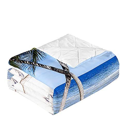 Oduo Colcha Bouti Cama de Verano, Microfibra Cubrecama Multiusos Suave para Cama de Matrimonio, Lavable Acolchada Edredón Ligero Manta para Todas Las Estaciones (Tabla de Surf,230x260cm)