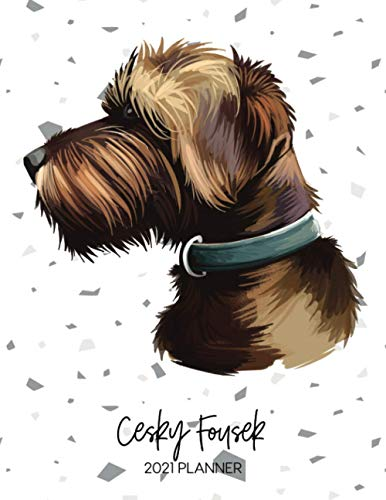Cesky Fousek 2021 Planner: Dated Weekly Diary With To Do Notes & Dog Quotes for Puppy Owners (Awesome Calendar Planners for Dog Owners - Pedigree Puppy Breeds 2021)