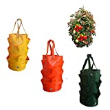 Hanging Planter Bag,3 Pack Hanging Strawberry Planting Containers Strawberry Grow Bags PE Strawberry Planter for Growing Vegetables Flowers Herb Plant