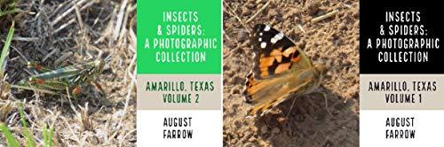 Wildlife: Amarillo, Texas (2 Book Series)