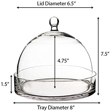 CYS EXCEL Glass Bell Dome Jar with Tray, Dessert Display Candy Buffet Showcase, 7.5""
