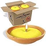 Kasalingo Candele Citronella in coccio antizanzare da esterno profumate alla citronella, lunga durata diametro 14 cm Prodotto 100% Made in Italy. (40 Pz)
