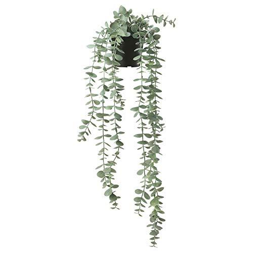 FEJKA - Planta artificial en maceta (9 cm), diseño de eucalipto
