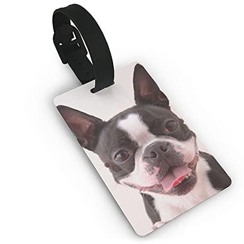 Etiquetas para equipaje de viaje de Boston Terriers, etiquetas de equipaje para maleta, etiquetas de identificación para bolsos, maletas, etiquetas para evitar la pérdida de bolsas y maletas