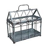 Esschert Design Invernadero con tapa con cierre, tamaño M, 36 x 19 x 32,7 cm, hierro y cristal con asa, patas estables
