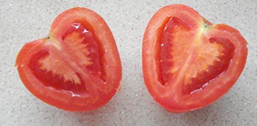 HÉRITAGE NON OGM Coeur de tomate 25 hongrois Graines