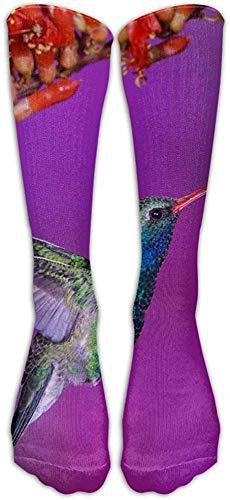 heefan Calcetines deportivos de tubo con flores de vuelo de pjaro colibr, calcetines altos clsicos para hombres y mujeres, calcetines largos deportivos, talla nica