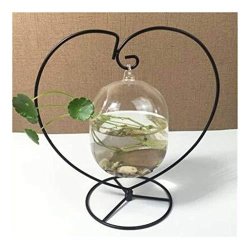 Hjd Aquarien Desktop hängende Glasfisch-Behälter Mini Gras-Fisch-Behälter Transparent Fisch Zylinder Schüssel Eisen-Halter Aquarium Zubehör Ständer Aquarien