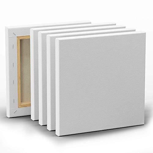 Set de 5 Lienzos para Pintar de 20x20cm - Canvas Lienzo - Para Todo Tipo de Pintura: Acrílico, Oleo, Acuarela - Lienzos 100% Algodón sin Ácidos con Bastidor de Madera para Telas Blancas