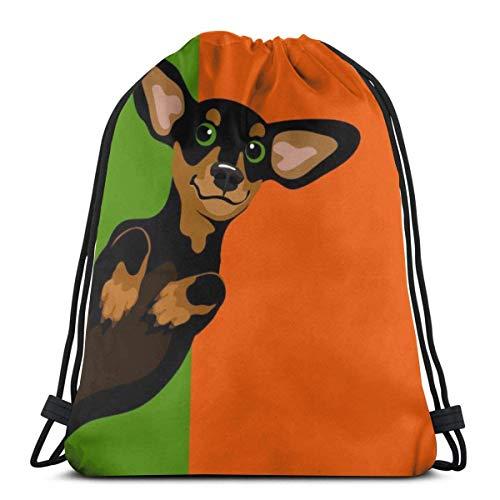 BXBX Trasportare Bags Dachshund Dog Drawstring Bag for Sports School Travel Swimming Bags Men, Women Students