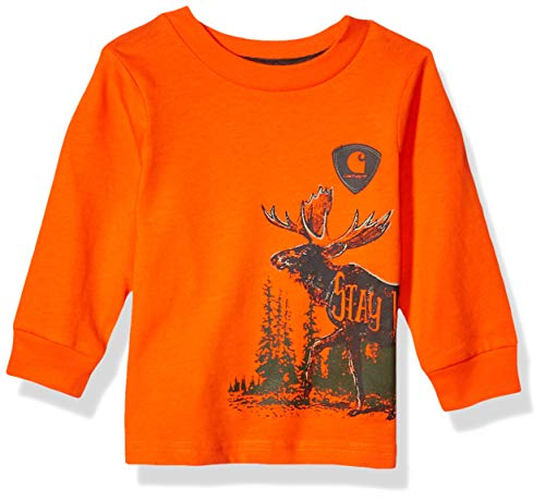Carhartt Baby Boys Long Sleeve Graphic Tee T-Shirt, Stay Wild wrap (Blaze Orange), 6 Months