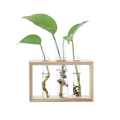 belupai Nordic Reagenzglas Glasvase Hydroponische Vase Elegante Tischvase Für Wasserpflanzen Blumenschmuck Dekoration Geschenk (3 Glasrohr)