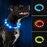 LaRoo LED Hundehalsband USB Wiederaufladbarer Night Safety Hundehalsband Leuchtend Halsband für Klein Mittleren Großen und Langhaarigen Hund -3 Modus (Blau, (70cm*1cm))