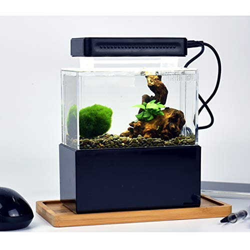 Yshen Mini Vis Tank, LED Aquarium Mini Vis Bowls Blok Reptiel Doos USB Oplader Kantoortafel Decoratie Oceaan Micro-Landscape Box Miniatuur Huisdier Doos, 13.5cm*8.5cm*7cm, Zwart blauwe LED versie