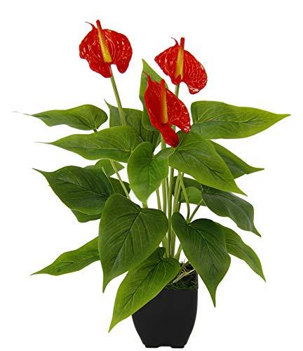 Künstliche Anthurium Pflanze im Topf Anthurie exotische Flamingoblume Flamingo Blume exotische Pflanze mit roten Blüten Flamingopflanze Kunstpflanze Dekopflanze Kunstblume Deko Zimmerpflanze Blumen