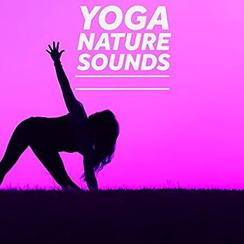 Hot Yoga Tunes