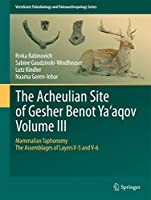 The Acheulian Site of Gesher Benot Ya'aqov Volume III: Mammalian Taphonomy. The Assemblages of Layers V-5 and V-6 (Vertebrate Paleobiology and Paleoanthropology)