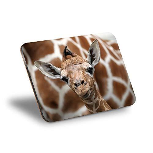Destination Vinyl ltd Mantel individual de corcho 290 x 215 – Lindo bebé jirafa cara de trabajo salvaje alfombra de mesa/limpiable/impermeable #12323