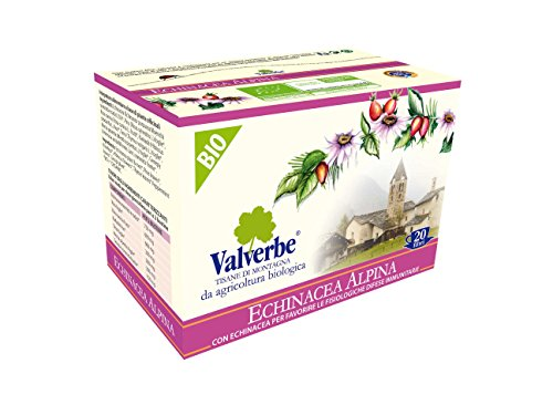 Valverbe Tisana Echinacea Alpina Biologico 20 Filtri - Pacco da 6 - 180 g