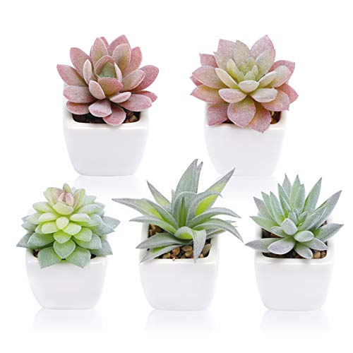 Funarty Artificial Succulent Plants in Pots, Fake Succulent Small Potted Faux Succulent Plants, Mini...