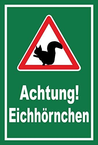 Melis Folienwerkstatt Schild Achtung Eichhörnchen - 15x10cm - Bohrlöcher - 3mm Aluverbund – 20 VAR S00359-161-E